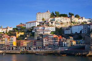 טיול מאורגן לפורטוגל לשומרי מסורת ארז טורס